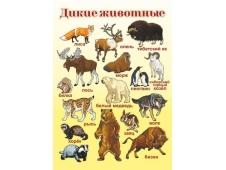 НЛО Плакат А-2 Дикие животные