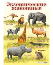 НЛО Плакат А-2 Экзотические животные