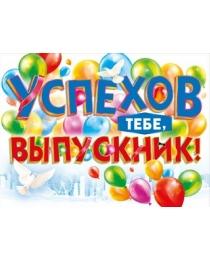 """Плакат """"Успехов тебе, выпускник!"""" 070.795"""