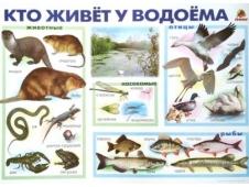 Обучающее пособие - плакат Кто живёт в лесу