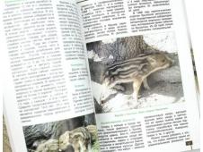 Животные-вселенцы Крыма
