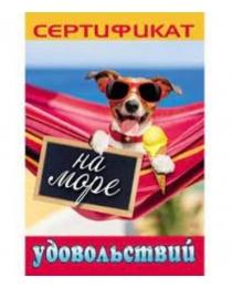 Диплом праздничный (9-30) Сертификат на море удовольствий 9-30-0104