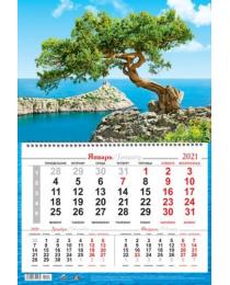 Календарь на 1-ой пружине 2021 № 18 Новый Свет